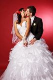 Happy Bride And Groom Kissing Royalty Free Stock Image
