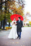 Happy Bride And Groom Walking In Park Stock Images