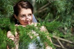 Happy bride in conifer branches Stock Images