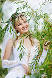 Happy bride in the foliage of the tree Royalty Free Stock Photo