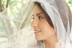 Happy Bride: Girl with Veil. Happy bride: beautiful girl with tulle veil outdoors, park, summer Stock Image