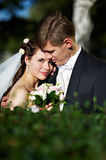 Happy bride and groom Stock Images
