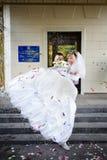 Happy bride and groom royalty free stock photos