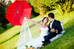 Happy bride and groom Royalty Free Stock Images