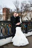 Happy bride and groom on bridge near castle Stock Images