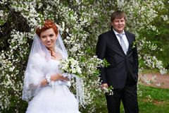 Happy bride and groom in cherry garden Royalty Free Stock Photography