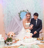Happy bride and  groom is cutting their wedding cake Stock Photography