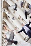 Happy bride and groom doves Stock Photos