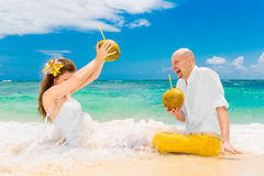 Happy bride and groom drink coconut water and having fun on a tr Royalty Free Stock Photos