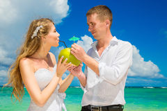 Happy bride and groom drink coconut water and having fun on a tr Stock Photography
