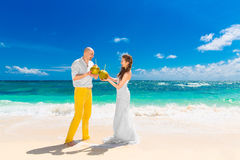 Happy bride and groom drink coconut water on a tropical beach. W Royalty Free Stock Image