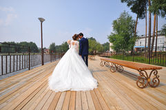 Happy bride and groom embracing  kissing on the bridge, shoot from back Royalty Free Stock Image