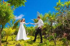 Happy bride and groom having fun on a tropical garden under the Royalty Free Stock Photo