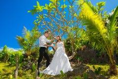 Happy bride and groom having fun on a tropical garden under the Stock Photos