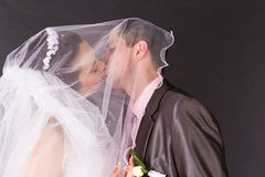 Happy bride and groom kissing under the veil Royalty Free Stock Photos