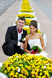 Happy bride and groom near yellow flowers Stock Image