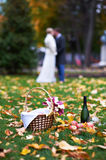 Happy bride and groom in park on picnic Stock Photos