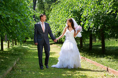 Happy bride and groom in shady alley Royalty Free Stock Photos