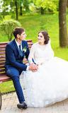 Happy bride and groom sit on the bench Royalty Free Stock Image