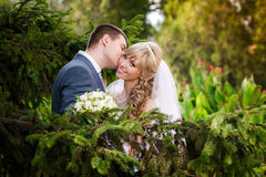 Happy bride and groom on their wedding day Royalty Free Stock Photography