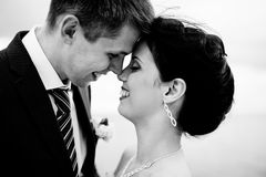 Happy bride and groom on their wedding Stock Images