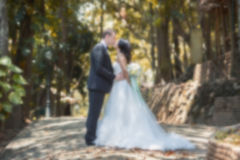 Happy bride and groom together Royalty Free Stock Photography