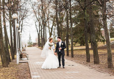 Happy bride and groom walking in the autumn park Stock Image