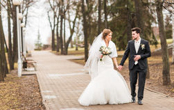 Happy bride and groom walking in the autumn park Royalty Free Stock Images