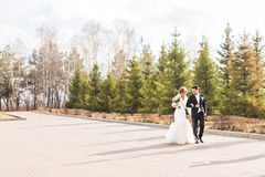 Happy bride and groom walking in the autumn park Stock Photography