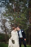 Happy bride and groom walking on the edge of a pine forest in the spring Stock Photography