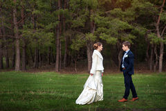 Happy bride and groom walking on the edge of a pine forest in th Stock Image