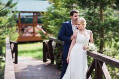 Happy bride and groom walking in the summer forest. Stock Photography