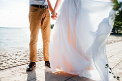 Happy bride and groom on a wedding walk. Near the lake embrace. Light dress develops in the wind Royalty Free Stock Image