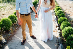Happy bride and groom on a wedding walk. Near the lake embrace. Light dress develops in the wind Stock Photography