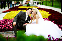 Happy bride and groom at wedding walk in park Stock Images