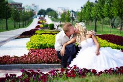 Happy bride and groom at wedding a walk in park Royalty Free Stock Photography