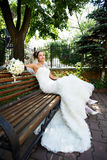 Happy bride on a park bench Stock Image