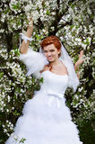 Happy bride in spring cherry garden Royalty Free Stock Images