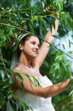 Happy bride in wedding dress and branch of tree Royalty Free Stock Photos
