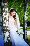 Happy bride at the white birches Stock Photo