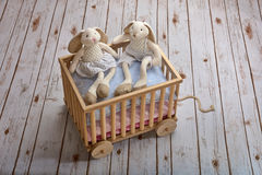 Happy brother and sister bunny toys Royalty Free Stock Image