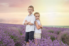 Happy brother and sister in lavender summer field Royalty Free Stock Photos