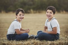Happy brothers. In the field Stock Photo