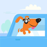 Happy brown and black dog travelling in blue car. Dog in car window enjoys road trip. Vector Illustration Royalty Free Stock Photography