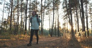 Happy brunette female traveler in jacket with big tourist backpack walking in autumn forest at sunny warm day. Sun light breaking. Through trees leaves stock video