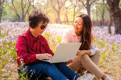 Smiling daughter showing laptop computer to mother while sitting in a park. stock photos
