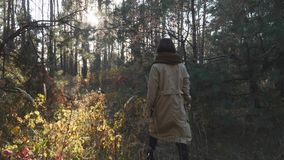 Happy brunette woman enjoying afternoon walk in autumn forest. Smiling young female walking through green forest. Rear view.  stock footage