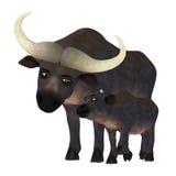 Happy Buffalo Family Royalty Free Stock Photo