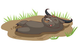 Happy buffalo take a bath in mud. Illustration Royalty Free Stock Photography