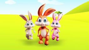 Happy Bunny running stock footage